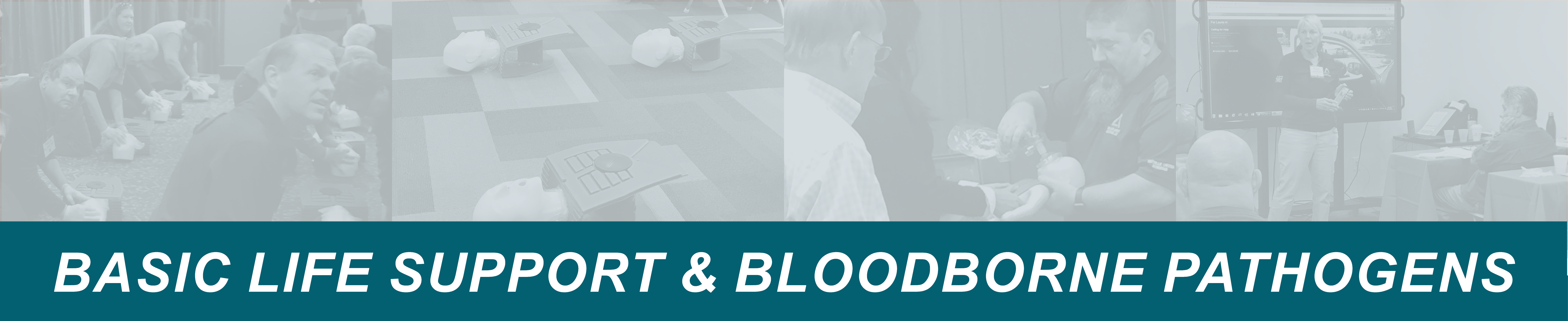basic life support and bloodborne pathogens